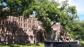 Leiden Universiteit
